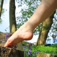 Tyrimas- dėl kojų venų ligų