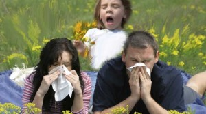 Alergijos gydymo būdas
