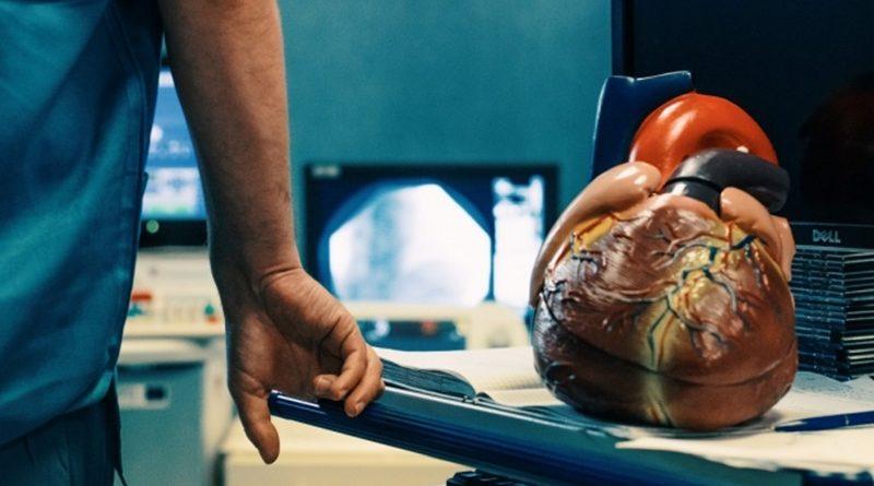 4 pusės galvos širdies rankoms ir sveikatai)